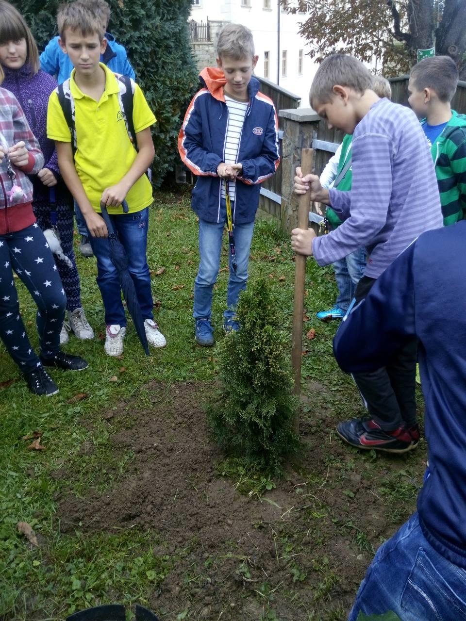 Dan sajenja drevesa 2014