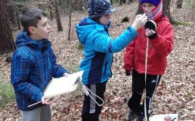 Raziskovanje gozdnih tal in nabiranje dračja