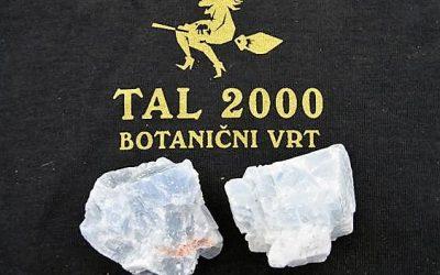 Razstava mineralov, kamnin in fosilov