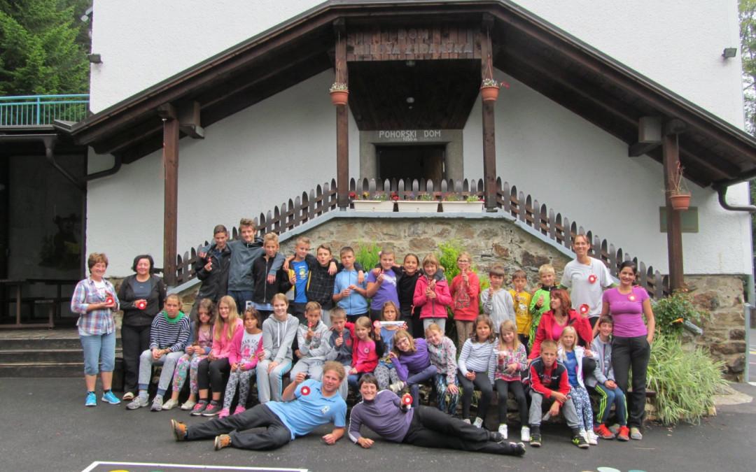 Planinski tabor na Pohorju